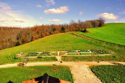 L'orto e il bosco prospiciente